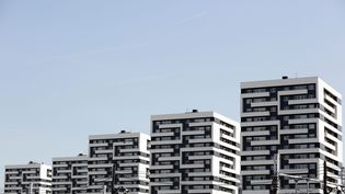 Les immeubles de la cite HLM Curial Cambrai dans le 19earrondissement de Paris. (  MAXPPP)