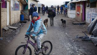 Jahangir, un orphelin afghan âgé de 10 ans,fait du vélo dans la jungle de Calais, le 23 février 2016. Ses deux parents sont morts durantla guerre. (MAXPPP)