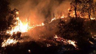 Incendie au Boulou du 14 au 15 juillet 2017. (France 3)