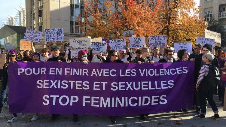 Deuxième édition de la Marche contre les violences faites aux femmes à Montpellier (Hérault), le 23 novembre 2019. (ELENA LOUAZON / FRANCE-BLEU HÉRAULT)