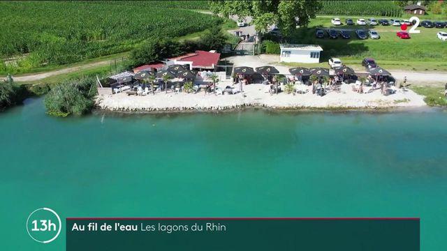 Haut-Rhin : à la découverte des lagons de Lauterbourg