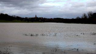 Une montée des eaux à Moyen en Meurthe-et-Moselle, le 31 janvier 2021 (photo d'illustration). (NATHALIE BROUTIN / RADIOFRANCE)