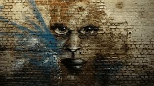 Les oeuvres murales du graffeur Ecloz connaissent un succès grandissant  (France 3 / Culturebox)