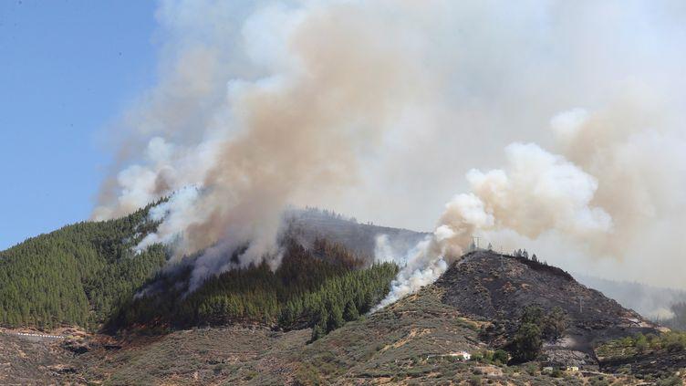 Un feu de forêt à Artenara, sur l'île espagnole de Grande Canarie, le 10 août 2019. (MAXPPP)