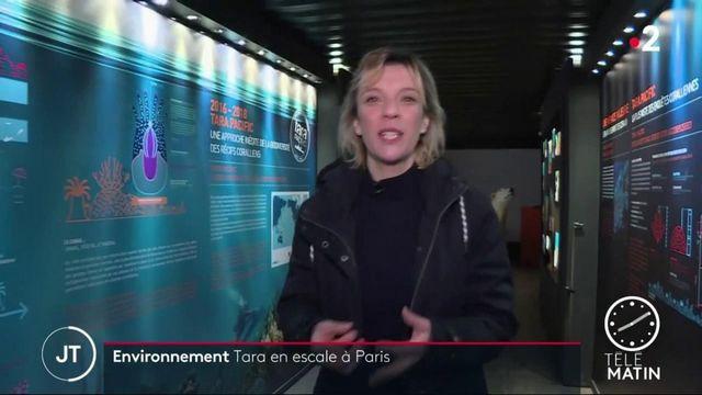 Une exposition consacrée à la goélette scientifique Tara ouvre ses portes à Paris