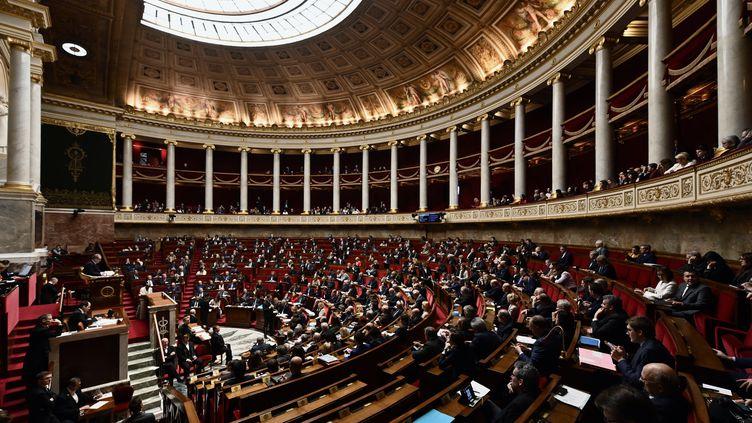 Vue d'ensemble de l'hémicycle de l'Assemblée nationale, à Paris, le 29 janvier 2019. (PHILIPPE LOPEZ / AFP)