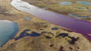 20000 tonnes de carburant se sont déversés dans la nature à la suite d'une fuite de la cuve d'une centrale thermique, causant des dégâts écologiques très importants. (France 2)