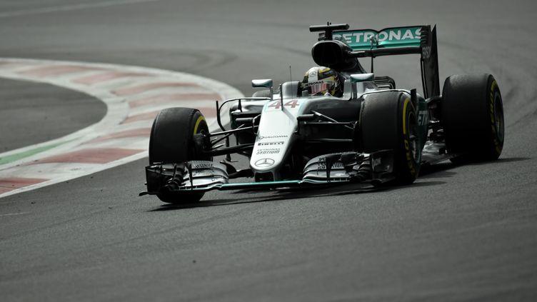 Plein soleil pour Lewis Hamilton (Mercedes) à Mexico (PEDRO PARDO / AFP)