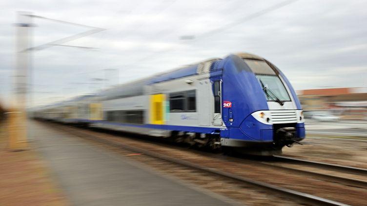 Un TER de la région Nord-Pas-de-Calais entre en gare de Bailleul (Nord), le 18 février 2014. (PHILIPPE HUGUEN / AFP)