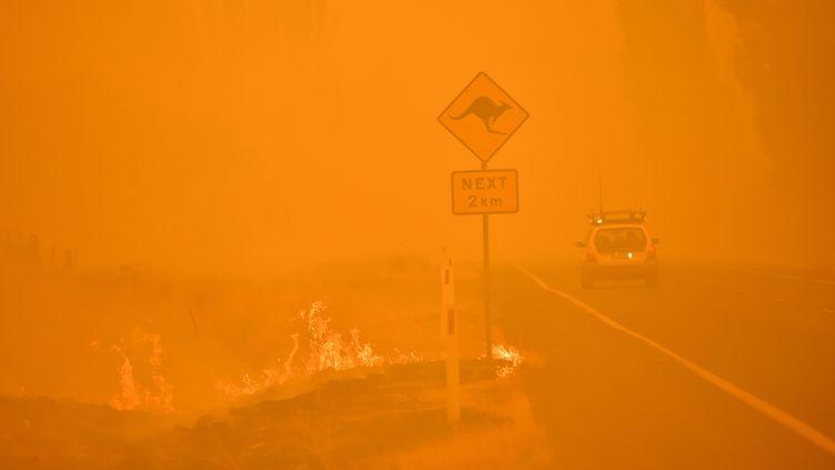Incendie à Bumbalong, en Australie, le 1er Février 2020. (PETER PARKS / AFP)