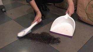 Environnement : une collecte de cheveux pour lutter contre la pollution (FRANCE 3)