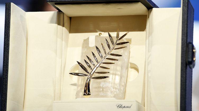 (La Palme d'or du Festival de Cannes sera remise le 22 mai. © MaxPPP)