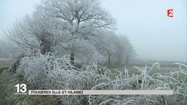 Saint-Sylvestre : le froid s'invite pour le réveillon