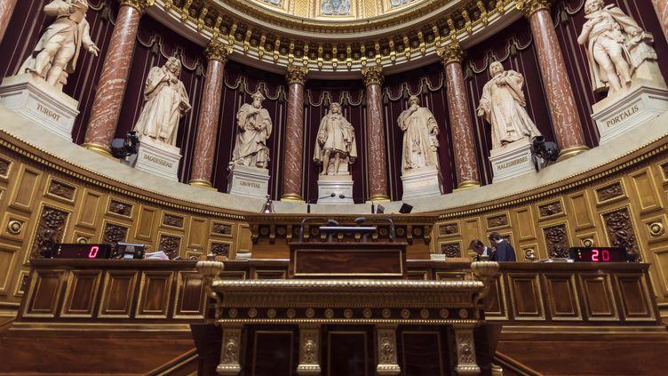 Le Sénat à Paris, en novembre 2016.  (LIONEL BONAVENTURE / AFP)