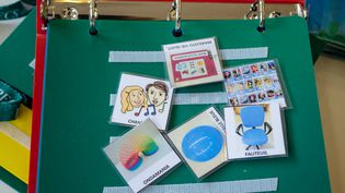 """Les images contenues dans ce classeur PECS, ou""""système de communication par échange d'images"""", permettent aux élèves autistes de la maternelle Ariane Icare (Bas-Rhin)de s'exprimer. (MARIE-VIOLETTE BERNARD / FRANCETV INFO)"""