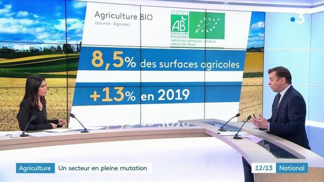Agriculture : plus de place pour le bio dans un secteur en pleine mutation