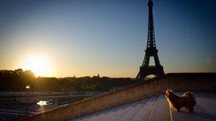 La Tour Eiffel au coucher du soleil, 21 septembre 2010 (AFP/Martin Bureau)