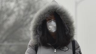 Une habitante de Pékin se protège avec un masque anti-pollution, le 20 décembre 2016. (STRINGER / IMAGINECHINA)