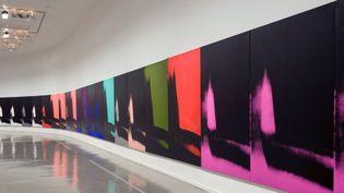 """Andy Warhol, """"Shadows"""", au Musée d'art moderne de le Ville de Paris (1er octobre 2015)  (Annie Viannet / MAXPPP)"""