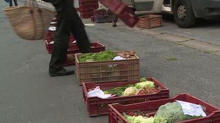 Alors que de nombreux marchés alimentaires sont encore fermés, samedi 25 avril, les maraîchers tentent tant bien que mal de vendre leur production pour survivre. À Reims (Marne), un producteur pratique la vente à la sauvette pour des clients qui ont déjà passé commande sur internet. (France 3)