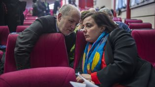 Les écologistes Denis Baupin et Emmanuelle Cosse, lors d'un conseil fédéral d'EELV à Paris, le 17 janvier 2014. (ZIHNIOGLU KAMIL / SIPA)