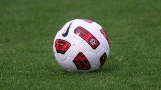 Le ballon officiel des compétitions de la FFF saison 2010-2011. (MICHEL CLEMENTZ / PRESS CARD 115846 / MAXPPP)