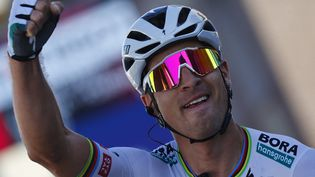 La joie de Peter Sagan qui renoue avec la victoire sur le Giro lors de la 10e étape, le lundi 17 mai (LUCA BETTINI / AFP)