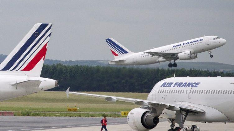 Des avions d'Air France sur le tarmac de l'aéroport Roissy-Charles-de-Gaulle, le 31 mars 2012. (JOEL SAGET / AFP)