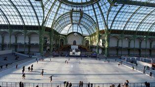 La plus grande patinoire de France sous la verrière du Grand Palais à Paris avec 1800 mètres-carrés dédiés à la glisse - 12 décembre 2012 (MIGUEL MEDINA / AFP)