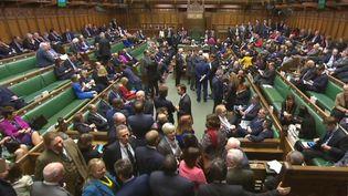 Capture d'écran d'une retransmission d'une séance de la Chambre des communes, le 8 février 2017, à Londres (Royaume-Uni). (PRU / AFP)