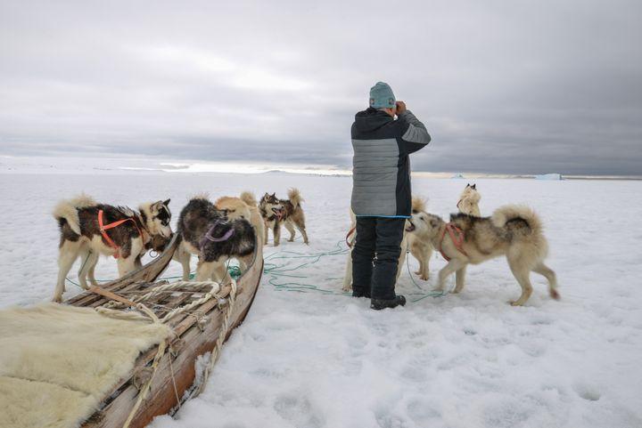 Moins de chiens, moins de chasseurs, une banquise plus fragile, les conditions de vie ont beaucoup changé (©Vincent Hilaire)