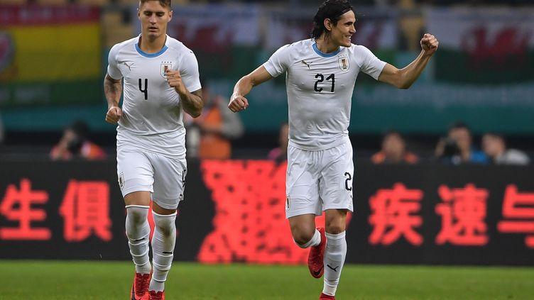 Edinson Cavani buteur avec l'Uruguray (- / AFP)