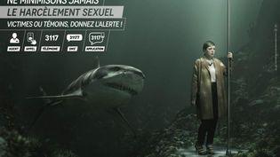 Une affiche de la campagne contre le harcèlement sexuel dans les transports en commun franciliens. (RATP)