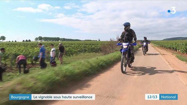 12/13 : Bourgogne : les gendarmes de la région surveillent les vignes des grands domaines
