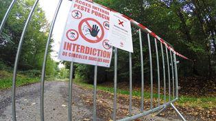 Barrière qui interdit l'accés à une zone où est présente la peste porcine, à Saint-Léger (Hautes-Alpes), le 22 septembre 2018. (JEAN-LUC FLEMAL / BELGA)