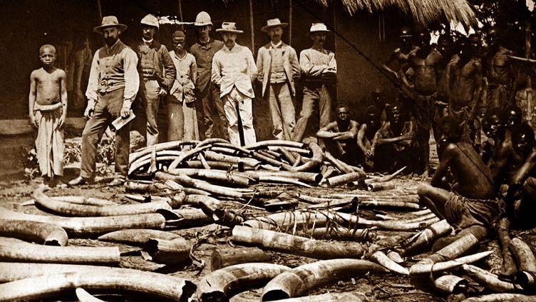 La colonisation belge du Congo a été particulièrment brutale :caoutchouc, ivoire, minerais incitent le roi Léopold II et les compagnies concessionnaires à entreprendre l'exploitation impitoyable de la population. (ANN RONAN PICTURE LIBRARY)