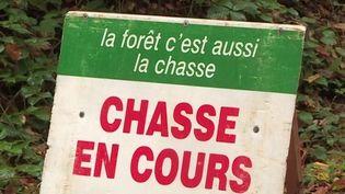 Chasse à courre : les associations de défense des animaux vent debout après un incident à Chantilly, dans l'Oise (France 3)