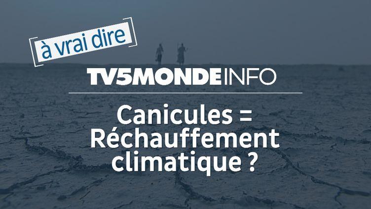 La canicule est-elle liée au réchauffement climatique ? (© TV5MONDE)