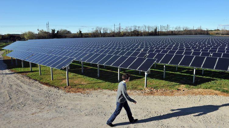 La première centrale solaire photovoltaïque au sol de France métropolitaine est située à Lunel (Hérault). (PASCAL GUYOT / AFP)
