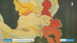 Une exposition met les roux à l'honneur à Paris. (FRANCE 3)
