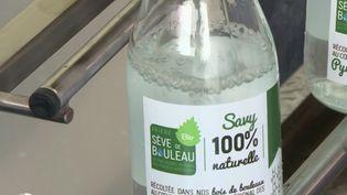 Ariège : la récolte de la sève de bouleau débute avec quelques semaines d'avance  (FRANCE 2)