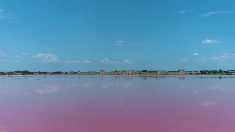 LesSalins d'Aigues-Mortes, dans le Gard. (CAPTURE ECRAN FRANCE 2)
