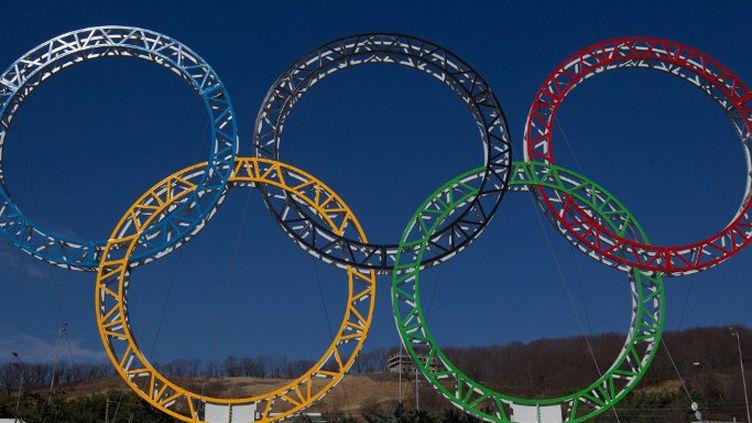Les anneaux olympiques à Sochi (MIHAIL MOKRUSHIN / RIA NOVOSTI)