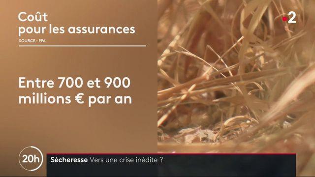 Sécheresse : comment indemniser les agriculteurs ?