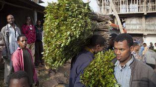 Livraison de khat dans un marchéà Awaday, en Ethiopie (2014). Originaire de ce pays, la plante a été introduite au début du XXe siècle au nord deMadagascar. (ZACHARIAS ABUBEKER / AFP)