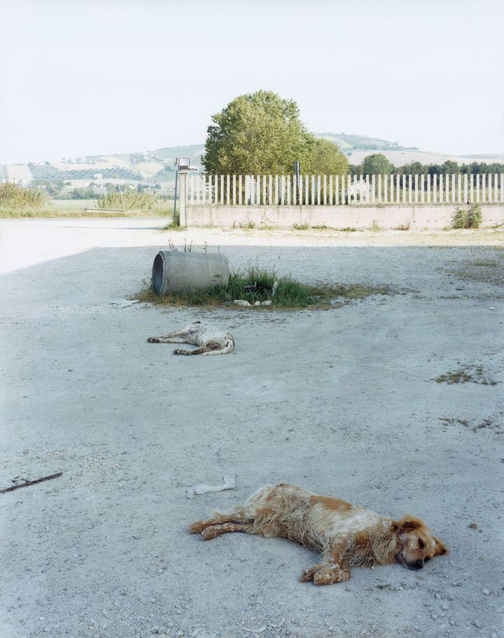 Guido Guidi, Atri, Italie, 05-2003  (Guido Guidi)
