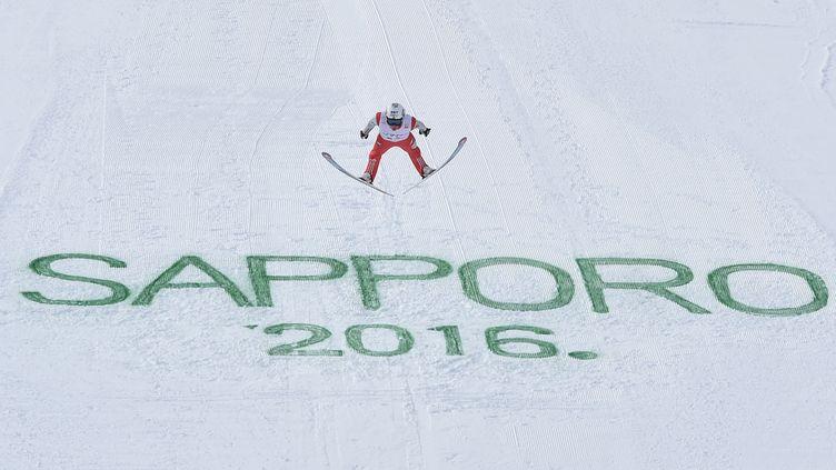 Le Norvégien Anders Fannemel a remporté le second concours de saut à skis de Sapporo (Japon).  (KAZUHIRO NOGI / AFP)