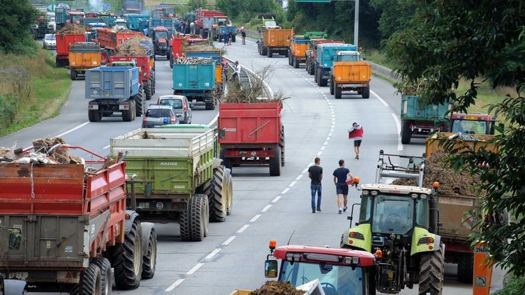 Des agriculteurs bloquent la voie rapide entre Quimper et Brest, le 21 juillet 2015. (FRED TANNEAU / AFP)