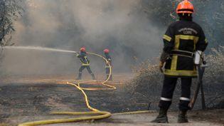 Des pompiers luttent contre les flammes, à Saint-Cannat (Bouches-du-Rhône), le 15 juillet 2017. (FRANCK PENNANT / AFP)