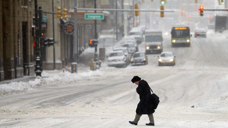 Detroit (Michigan), le 6 janvier 2014. (JOSHUA LOTT / GETTY IMAGES NORTH AMERICA / AFP)